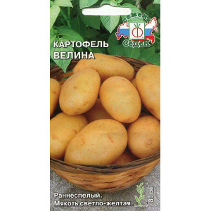 Картофель Велина, Раннеспелый,мякоть св-желтая (Седек) 0,02 Ц