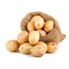 Картофель посевной