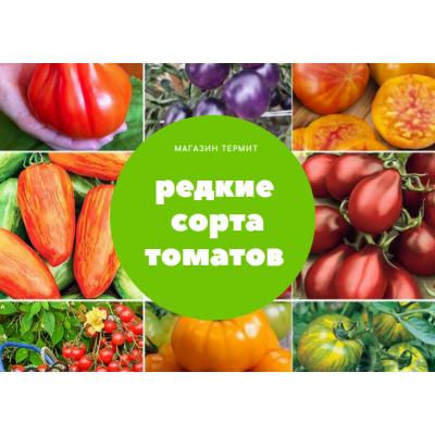 Томат Редкий- Коллекционные сорта томатов