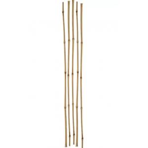 Бамбуковые колышки 75см (1шт)