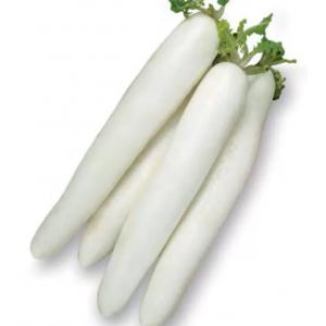 Дайкон Японский длинный Седек Белый пакет