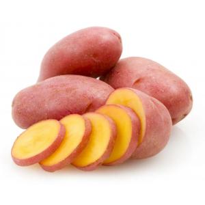 Картофель Родриго кг