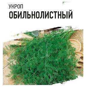 Укроп Обильнолиственный Гавриш Белый пакет